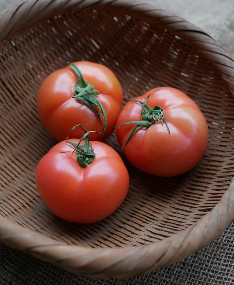 べっぴんトマト(みそら 109)